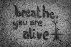 breath you are alive