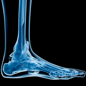 foot and ankle scientific pic
