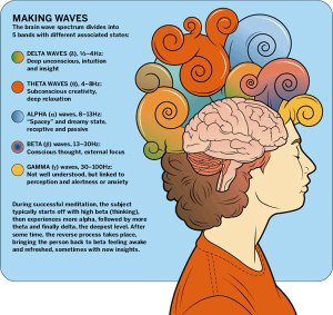 brain waves meditation