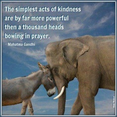 Ghandi kindness