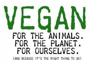 vegan right thing to do