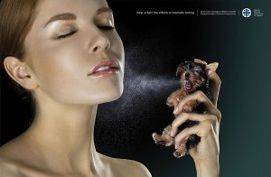 social-awareness-animal-testing