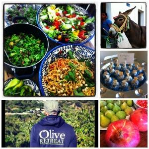 Istan olive hoddie